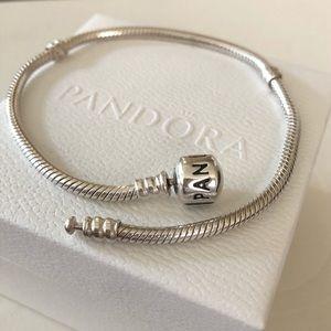 Authentic PANDORA ICONIC Bracelet Large